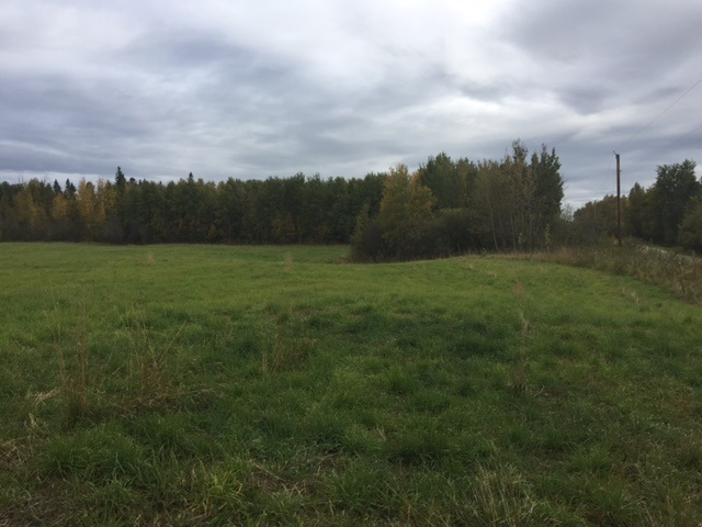 RR 45 Rural County of Brazeau, at $79,000